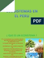 Conservacion de Ecosistemas en El Peru