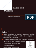40 Normal Labor and Dystocia.ppt