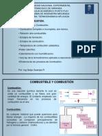 tema-8-combustic3b3n.pdf