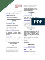 DIAGNOSTICO E INFORME PSICOLOGICO
