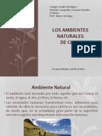 AMBIENTES+NATURALES+DE+CHILE+1+-+DESÉRTICO+-++6°+BASICO