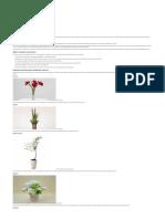 TOP 20 Plantas Para Ambientes Fechados - Playgrama