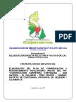 Bases Servicios Consultoria PACRI