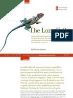 10.LongTail - Summary.pdf