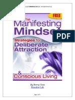 Manifesting Mindset