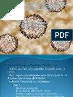 Seminário - Ciclo do HPV
