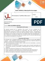 Anexo 3. Formato Análisis y Descripción de Cargos_Santiago_Sapuy