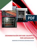 Deshidratacion Por Aire Caliente y Liofilización 1