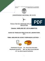 V. A.LECHE.2013.pdf
