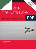 Managing the Data Lake