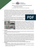 Test de Germinación Alfonso Sebastian Flores Quezada
