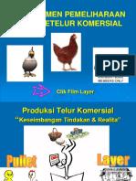 8-Manajemen Ayam Petelur
