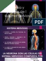 Presentacion Anatomía y Fisiología de l Sistema Nervioso