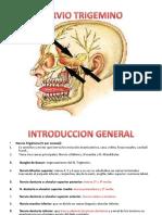 Anestesiologadental Nerviotrigmino 100511020104 Phpapp01