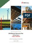 Xcel Energy's 120 day report (public version)