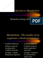 an introduction to metabolism-campbell ch