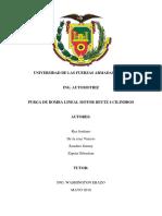 Informe-purgado.docx