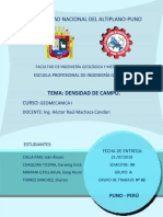 Informe de Densidad de Campo Final