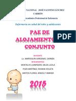 PAE DE ALOJAMIENTO EN CONJUNTO.pdf