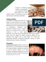 La Porcicultura