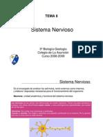 Generalidades Sistema_Nervioso