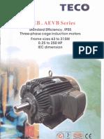 Teco Fan Motor Aeeb and Aevb Series