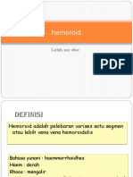 233303680-Idk-Hemoroid-Ppt.pptx