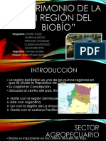 Trabajo Historia VIII region.pptx