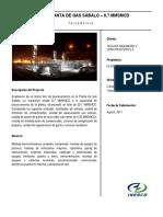 SABALO TERCER TREN.pdf
