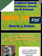 Cognicic3b3n y Lenguaje