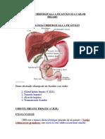 Patologia Chirurgicala a Ficatului Si Cailor Biliare