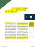Domesticando microorganismos
