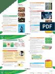 Science works (Oxford) by Philippa, Pam, Sandra & Chris