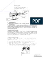 Instructiuni pentru dresaj.pdf