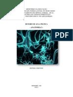 Apostila de Anatomia II - NERVOSO - Neuroanatomia -  Sistema Nervoso.pdf