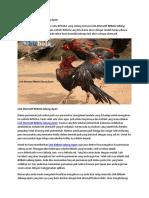 Link Alternatif BitBola Sabung Ayam