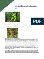 Hama Dan Penyakit Kacang Panjang Dan Penanganannya