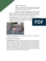 Tipos de combustibles según.docx