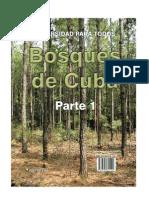 BosquesParte1