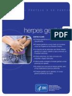 Sp Genital-herpes Final 508