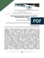 Embrapa Florestas - Publicação Talita Künast