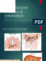 Bacterial Liver Infection & Inflamation