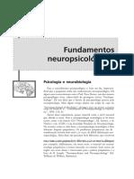 DocGo.Net-177071434-Neuropsicologia-Dos-Transtornos-Mentais.pdf.pdf