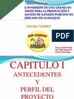 PROYECTO DE INVERSI+ôN DE UNA GRANJA EN EL SECTOR DE SAMBORO.pdf