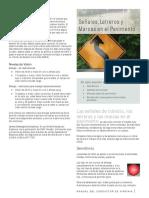 dmv39Sc.pdf