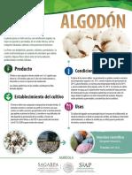 Algodon Monograf A