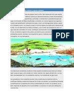 Ecosistemas de Aguas Dulces y Aguas Saladas