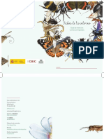 taller-insectos.pdf