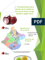 Proyecto Cebollas