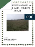 chimbote (2).docx